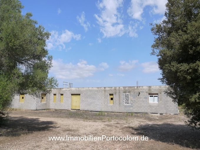 Immobilien Finca in construction in Felanitx - Finca in Son Negre